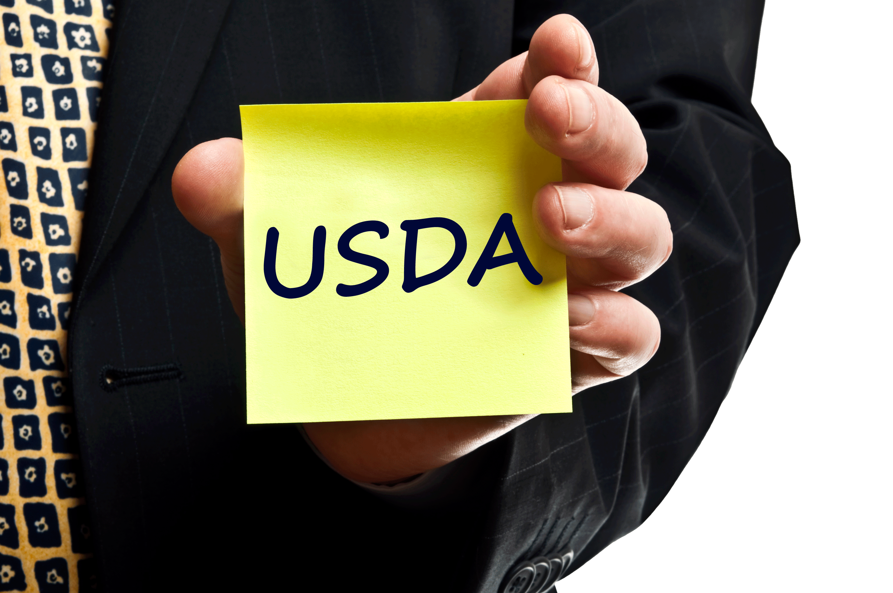 Qualifying for a usda loan in california with debt ratios for Usda approved homes